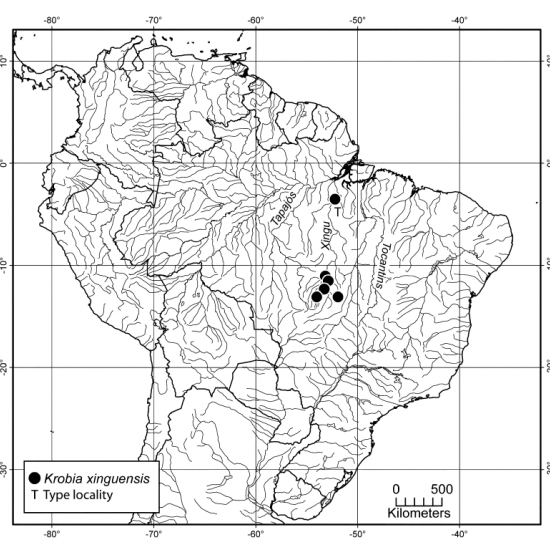 r_krobia-xinguensis-locality-map.png