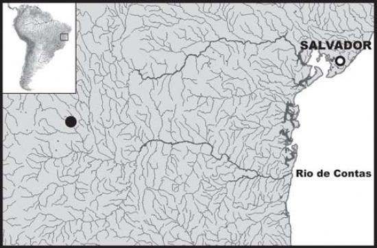 Кружочком отмечено место находки Hyphessobrycon brumado